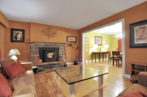 We installed birch hardwood floors, a pellet stove,a  maple mantle and a stone hearth