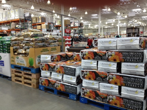 Why is Costco always four months beyond real time?