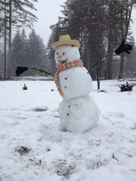 "This snowman says, ""Spend less time at Costco and you're life will seem richer!"""
